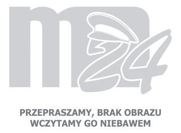 Emblemat STRAŻ Ratownik